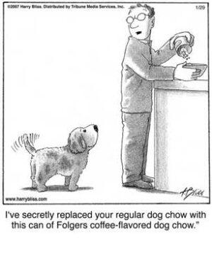 Coffee-flavoured dog chow