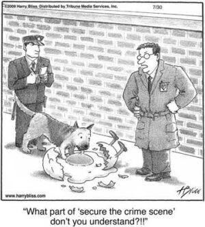 secure the crime scene