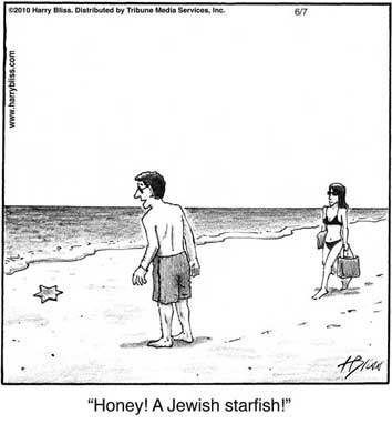 Jewish starfish