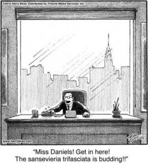 Miss Daniels! Get in here!