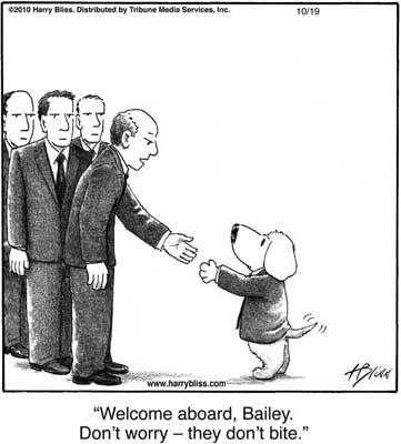 Welcome aboard Bailey...