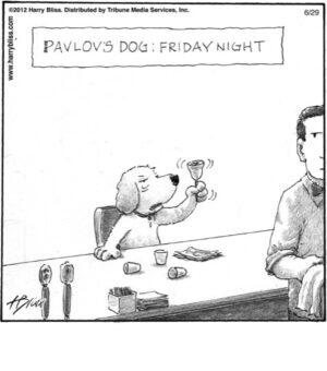 Pavlov's dog: Friday night