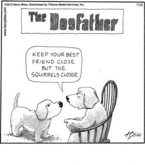 The Dogfather...