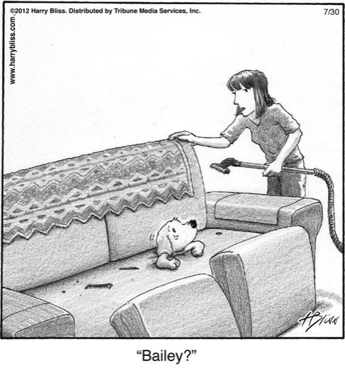 Bailey?