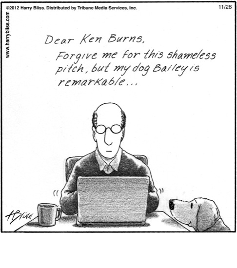 Dear Ken Burns...