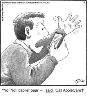 No! Not 'capiler bear'...