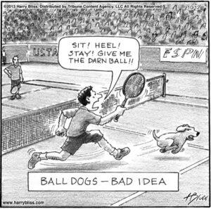 Ball dogs...