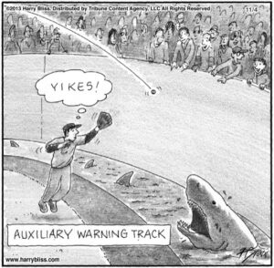 Auxiliary warning track...