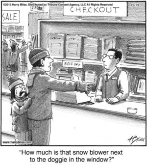 How much is that snow blower...