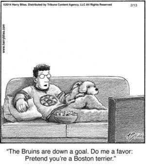 The Bruins are down...