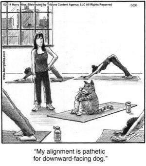my alignment is pathetic...