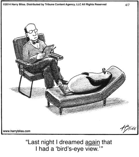 Last night I dreamed...
