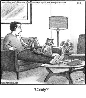 Comfy?...