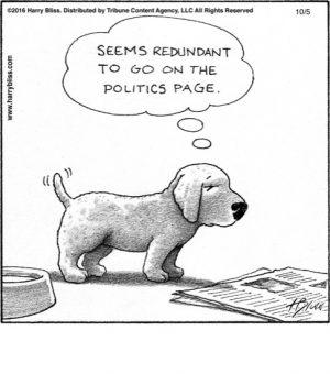 The politics page...