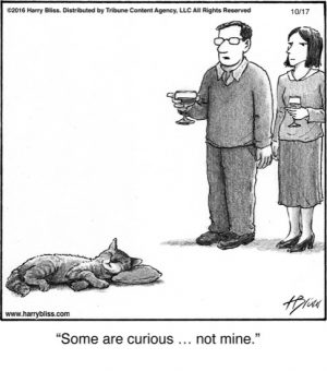 Some are curious...