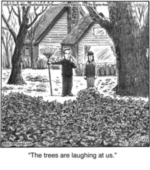The trees are laughing...