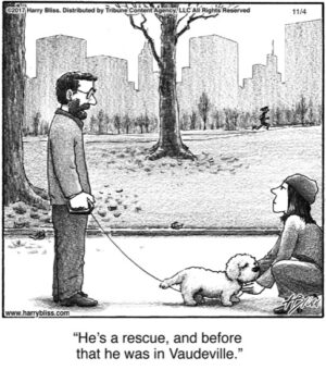 He's a rescue...