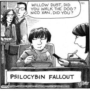 Psilocybin fallout...