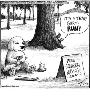 Free squirrel massage...