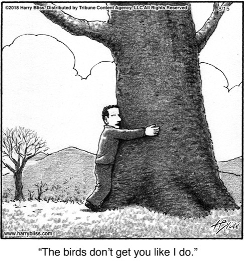 The birds don't get you...