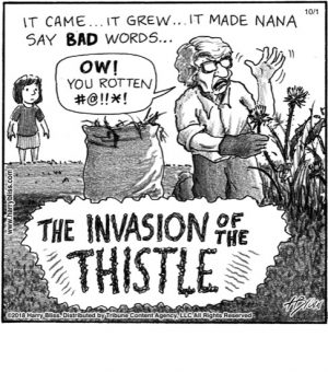 The invasion of...