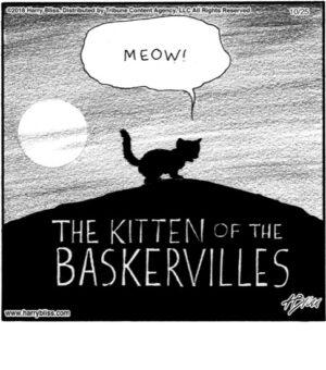 The kitten...