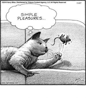Simple pleasures...
