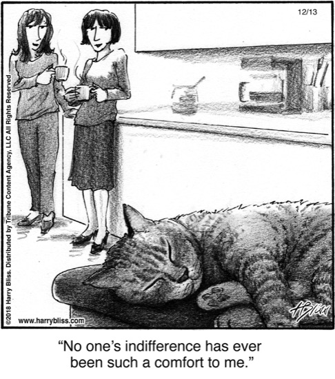 No one's indifference...