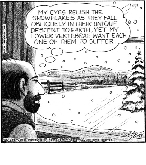 My eyes relish the snowflakes...