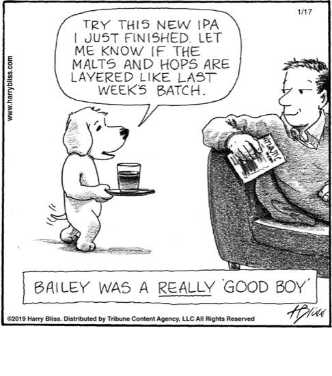 Bailey was a really 'good boy'...