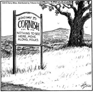 Welcome to Cornish...