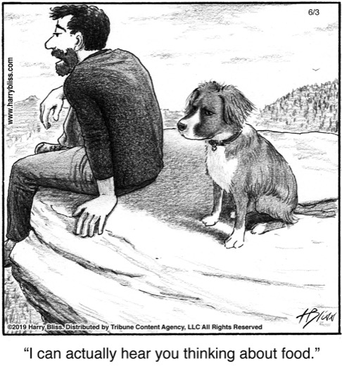 I can actually hear you thinking...
