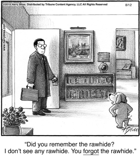 Did you remember the rawhide?..