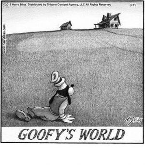 Goofy's world...