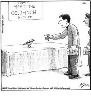 Meet the goldfinch...