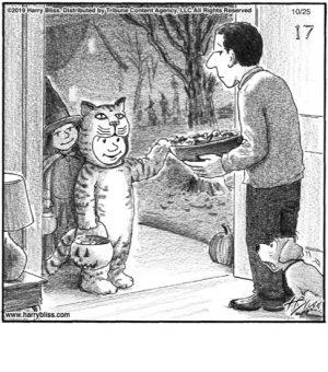 Cat costume...