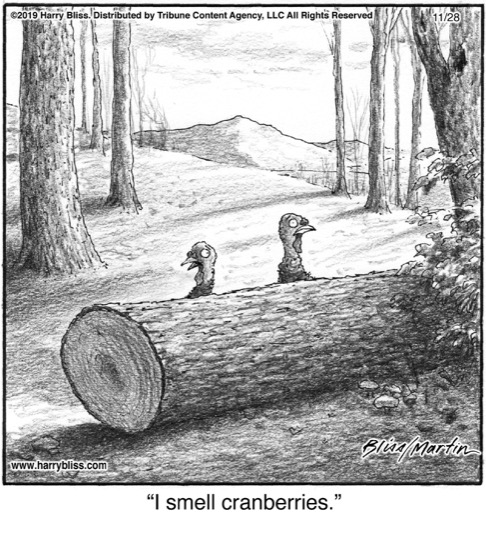 I smell...