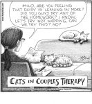 Cats in couples therapy...