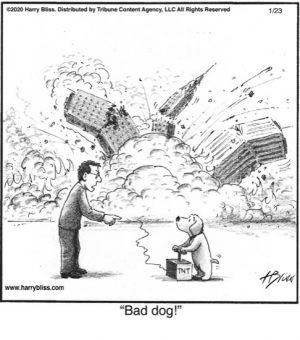 Bad dog!..