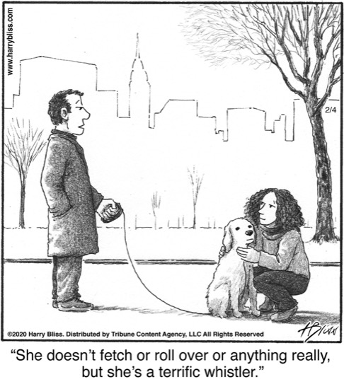She doesn't fetch or roll over...