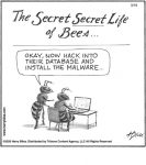 The secret life of Bees...