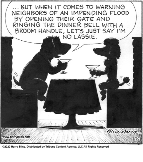Dog date...
