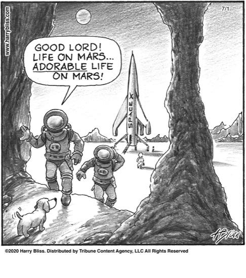 life on Mars...
