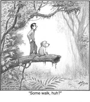 Some Walk...