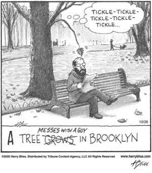 A tree messes with a guy...