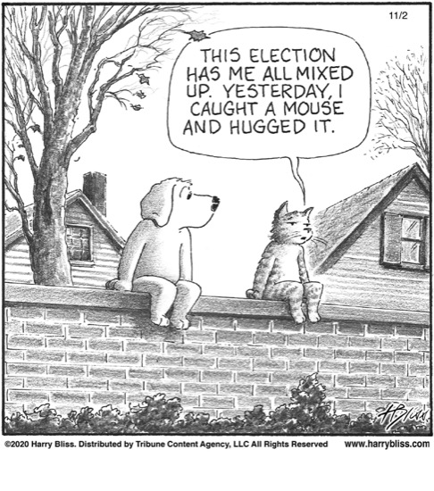 This election has me all mixed up...