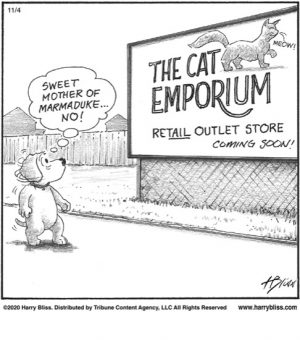 The Cat Emporium...