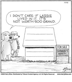 I don't care if Lassie lived in it...