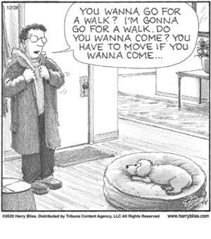 You wanna go for a walk?...