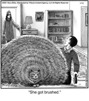 She got brushed...
